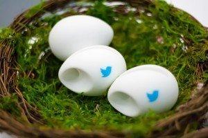 Twitter signed eggs
